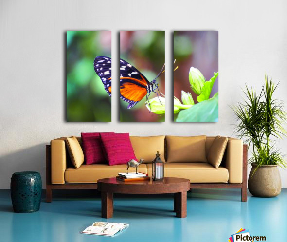 Monarch on a Bud Split Canvas print