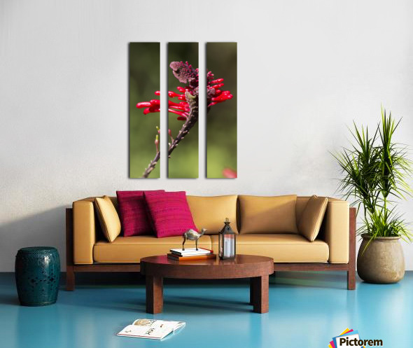 Red Flower Split Canvas print