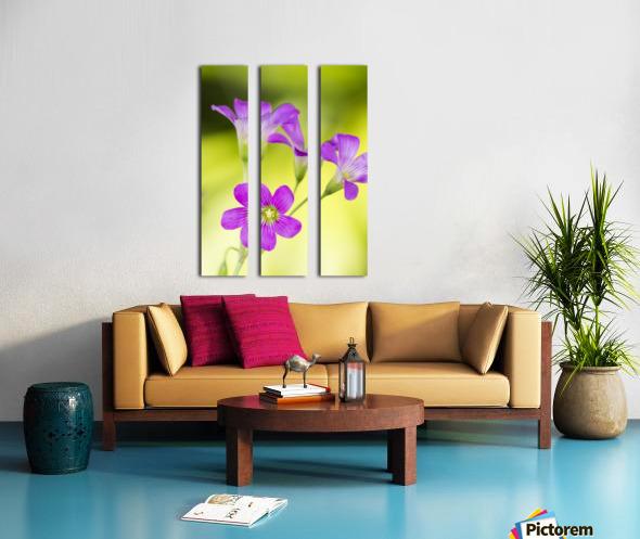 Little Pink Flowers Split Canvas print