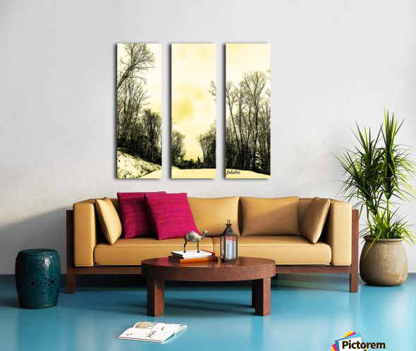 58AD1A24 DE23 4409 834D 74F66B329659 Split Canvas print