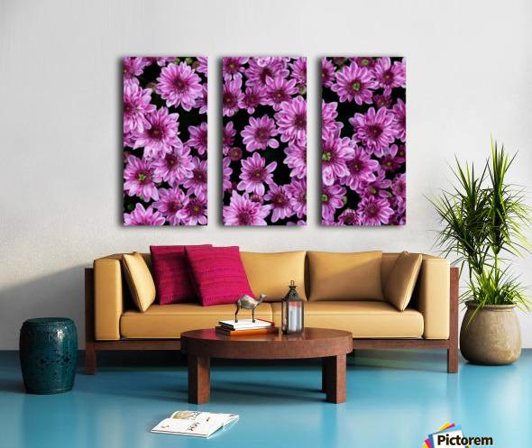 Purple flowre Split Canvas print