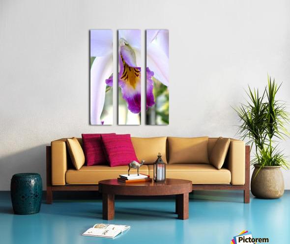 Orchid Poem Split Canvas print