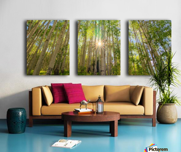STARSHINE Split Canvas print