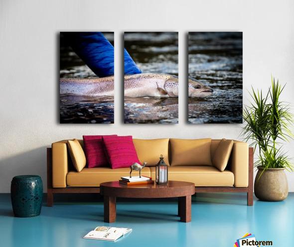 Salmon release Split Canvas print