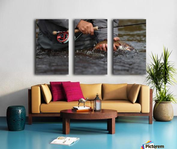 Brookie Split Canvas print