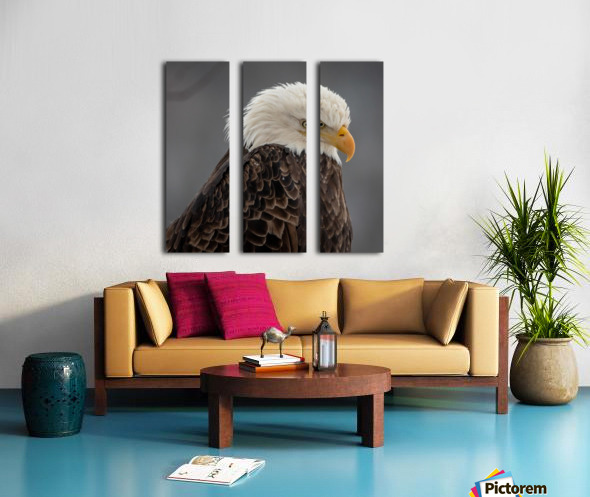 Eagle Split Canvas print