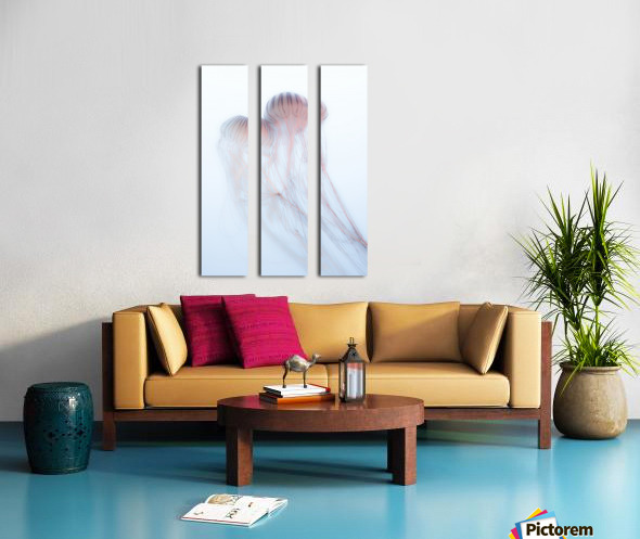 Lovers Split Canvas print