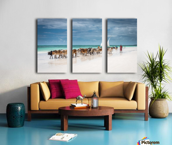 Masai cattle on Zanzibar beach Split Canvas print