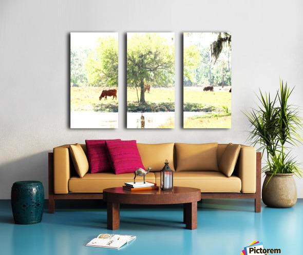 IMG_0120 Split Canvas print