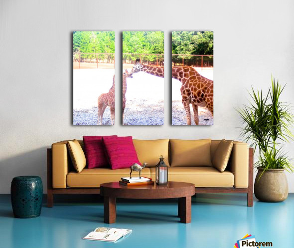 100_0842 4 Split Canvas print