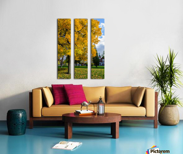 Autumn Split Canvas print