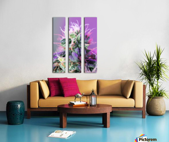 PinkFlower Split Canvas print