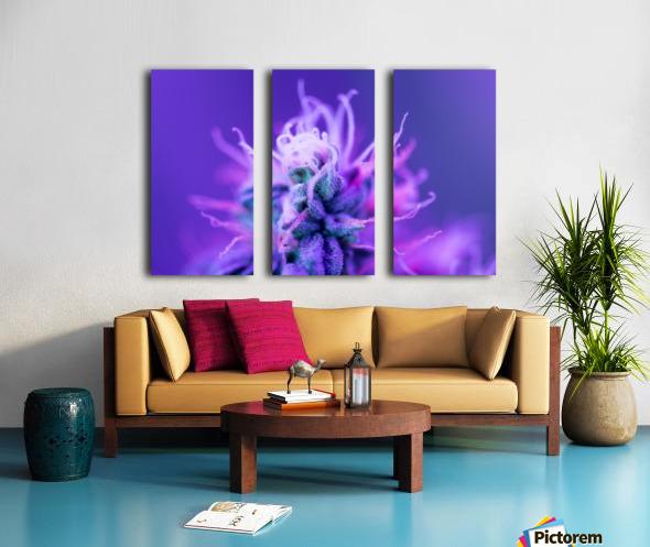 FloweringPhase Split Canvas print