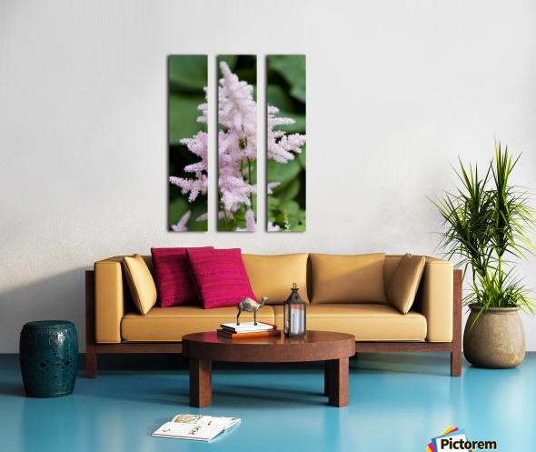 Pink Astilbe 2 Split Canvas print