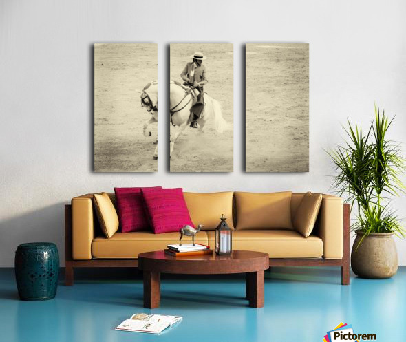 WHITE CHARGER 2. Split Canvas print