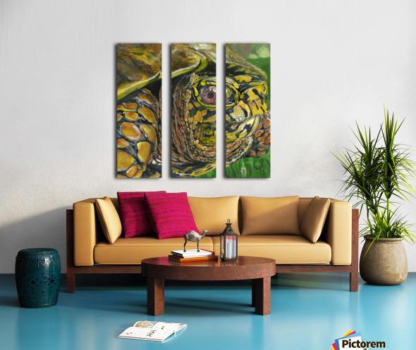Box Turtle Split Canvas print