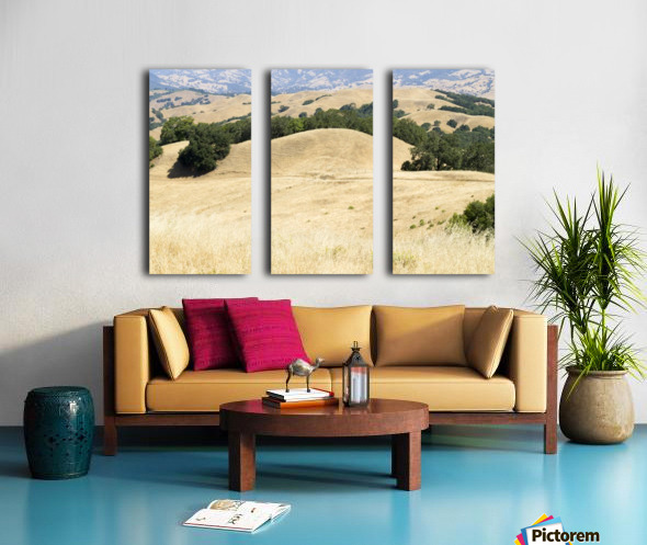 Pepperwood Presserve 1 Split Canvas print