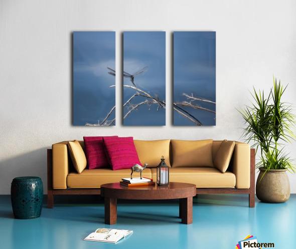 Dragonfly Digital Painting 52-70 200px Split Canvas print