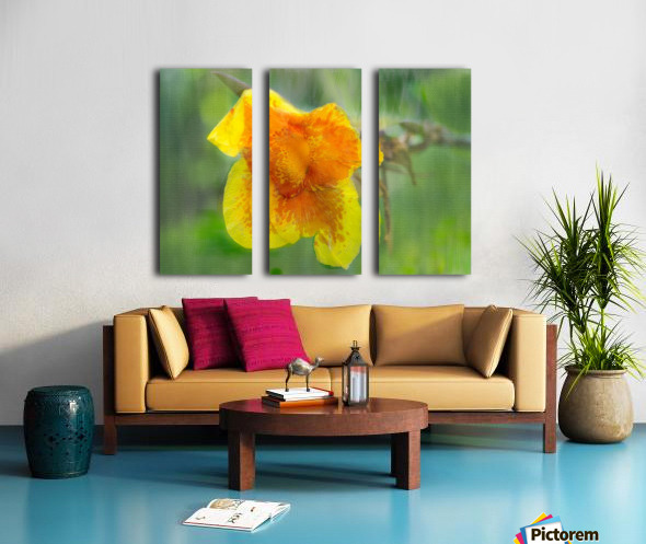 Canna Lily Digital Painting 52 70 200px Split Canvas print