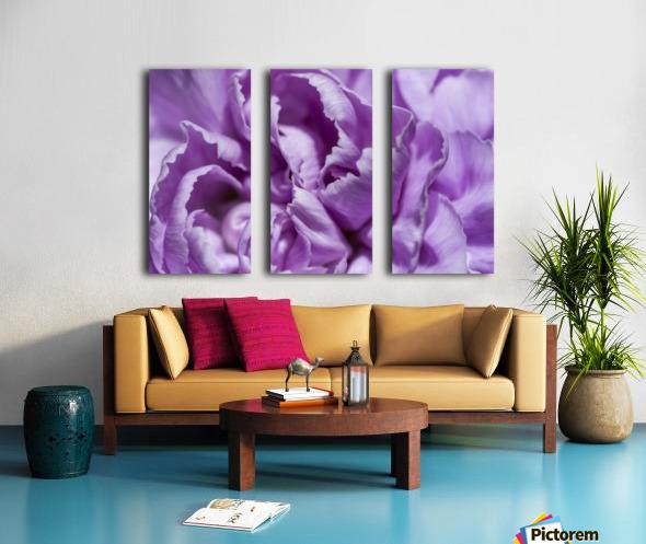 Purple Carnation Split Canvas print
