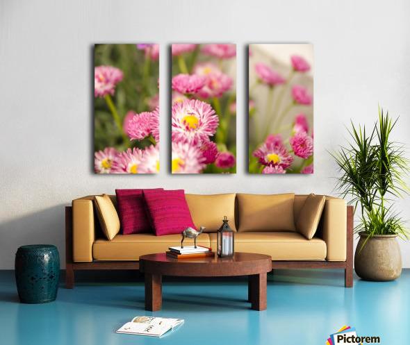 Blooms in the Garden Split Canvas print