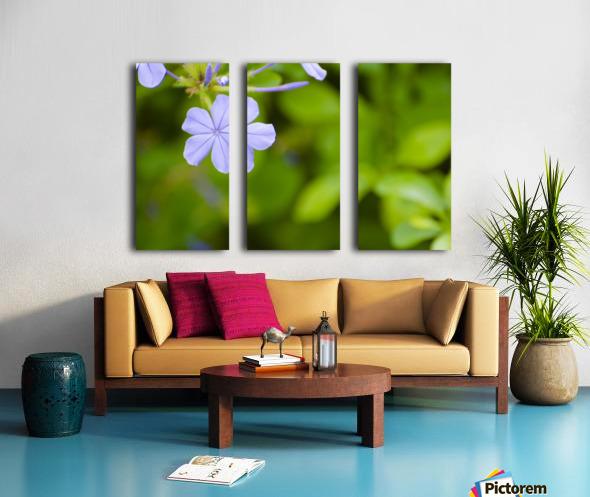 Flora Split Canvas print