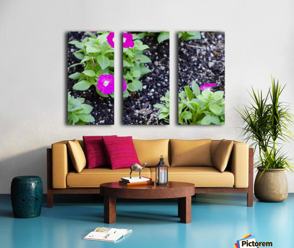 Flora Split Canvas print