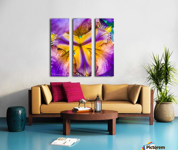 Thrive Split Canvas print
