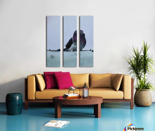 Beauty Split Canvas print