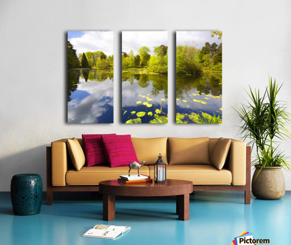CW 029 Altamont Garden, Co.Carlow Split Canvas print