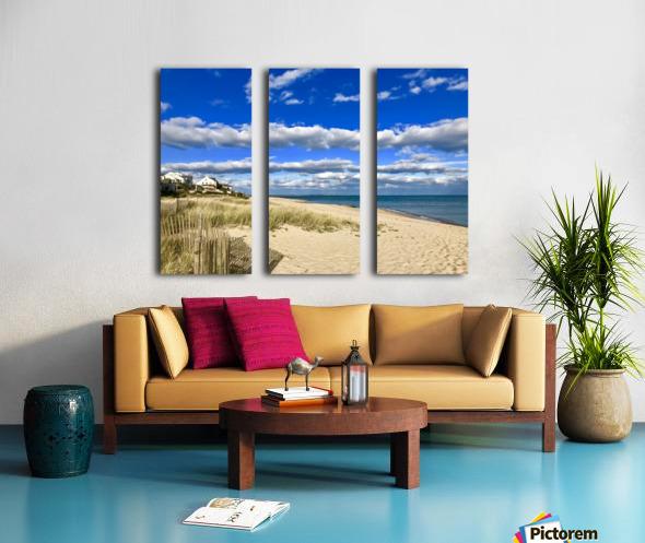 515C7F60 3377 4530 8E62 1C193D2671ED Split Canvas print