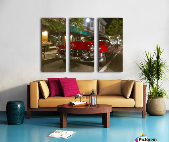 290AD98C 7795 432E A6FE 2E984CA33D4B Split Canvas print
