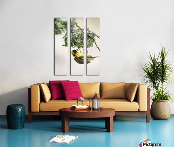 Anybody Home Split Canvas print