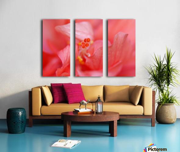 Double Peach Hibisicus Split Canvas print