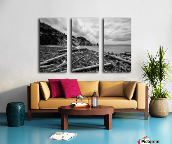 Presquile Split Canvas print