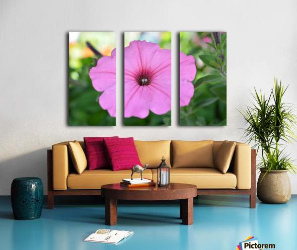 Pink Flower Photography Split Canvas print