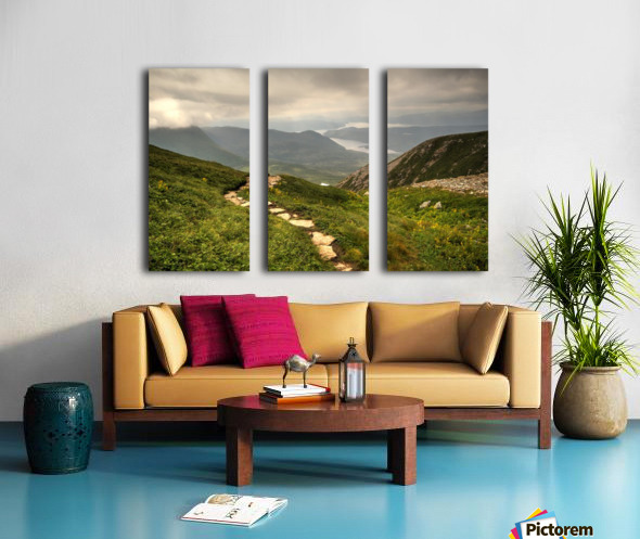 Grosmorne Mountain Split Canvas print