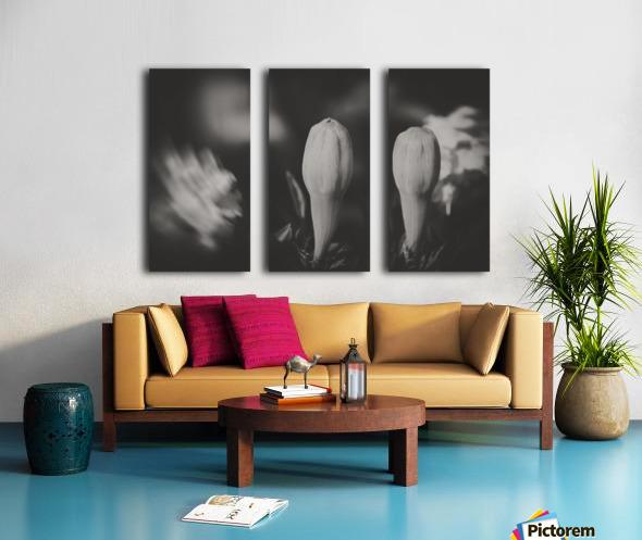 Brothers Split Canvas print