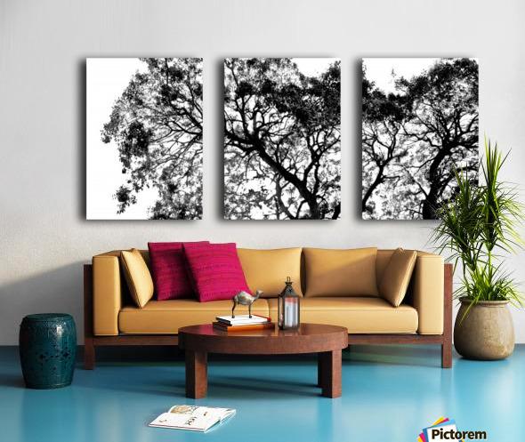 Tree Top Split Canvas print