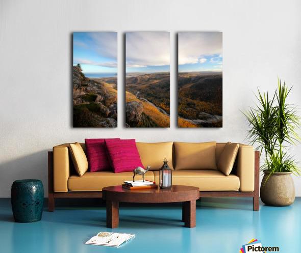 Franey Split Canvas print