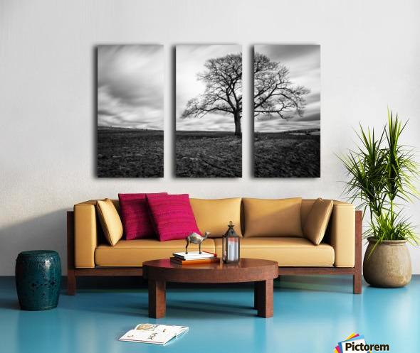 Dark Tree Split Canvas print