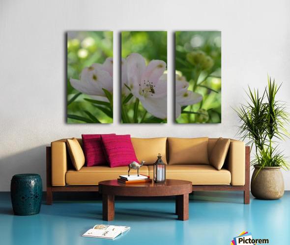 White Flowers Photograph Split Canvas print