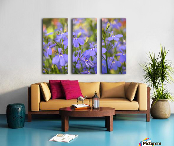 Blue Flowers Photograph Split Canvas print