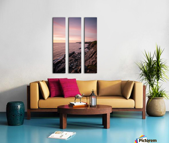 Silk Split Canvas print