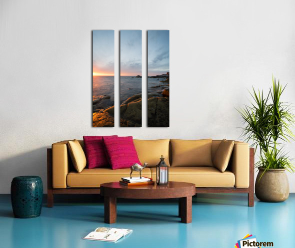 Felicity Split Canvas print