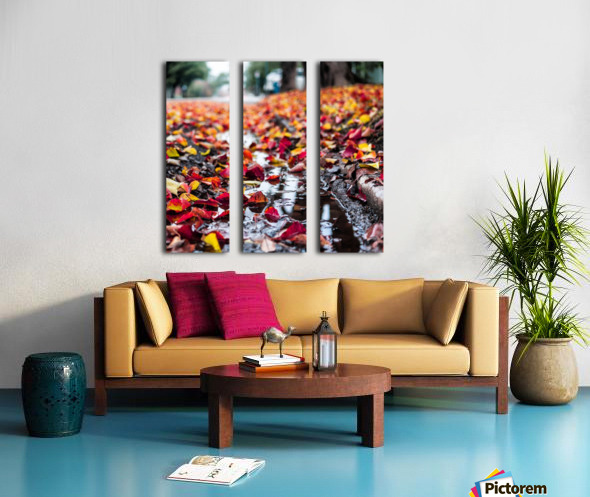 The Colors of Fall Split Canvas print