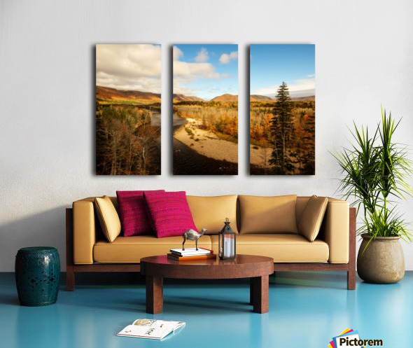 Boars Back Split Canvas print