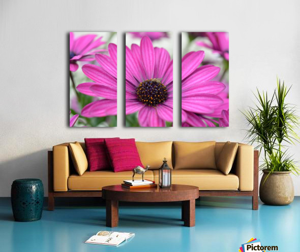 Purple Flower Photograph Split Canvas print