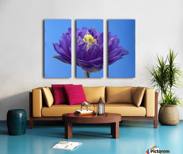 Blue Flower Photograph Split Canvas print