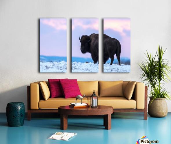 Buffalo Split Canvas print
